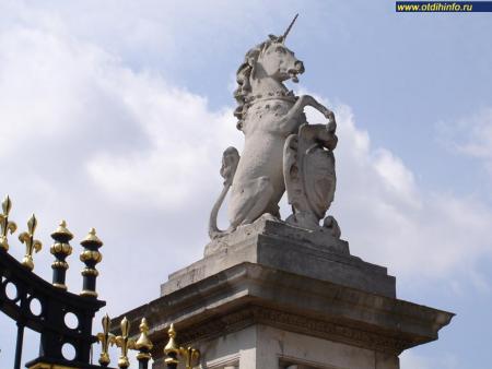 Фото: Букингемский дворец