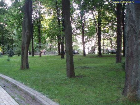 Фото: Крещатый парк