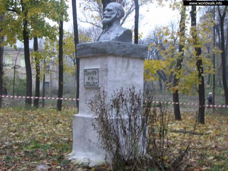 Фото: Памятник-бюст И. П. Павлову