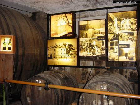 Фото: Музей завода Шартрез, подвалы завода Шартрез