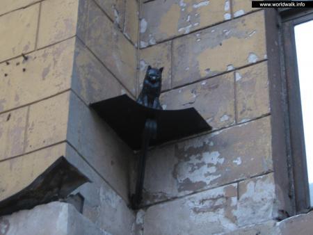 Фото: Памятник кошкам