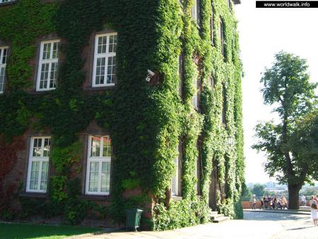 Фото: Замок Вавель, Королевский замок на Вавеле