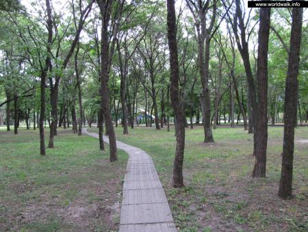Фото: Парк им. Богдана Хмельницкого