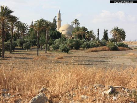 Фото: Мечеть Хала Султан Текке