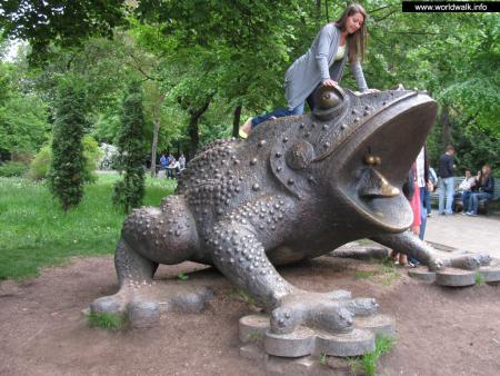 Фото: Памятник жабе