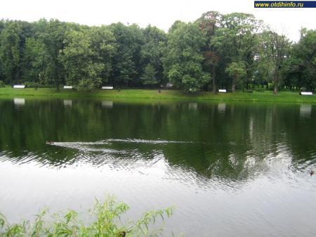 Фото: Екатерининский парк (Москва)