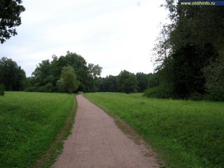Фото: Павловский парк (Павловск, Санкт-Петербург)