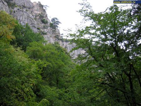 Фото: Большой каньон Крыма