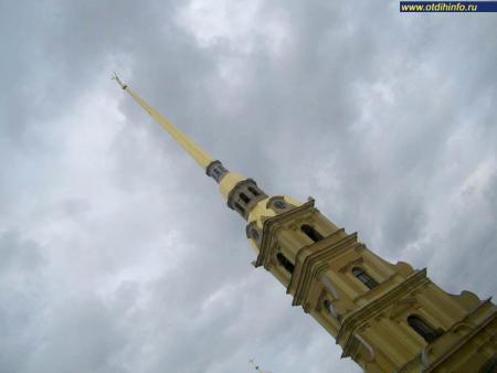 Фото: Петропавловский собор (Санкт-Петербург)
