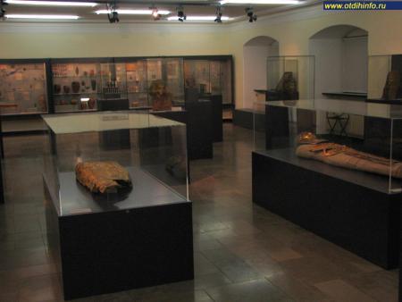 Фото: Музей Мартина фон Вагнера, Университетский музей